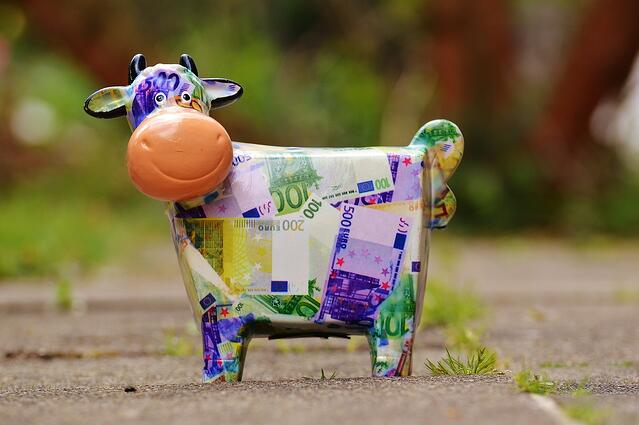 Piggy cow bank